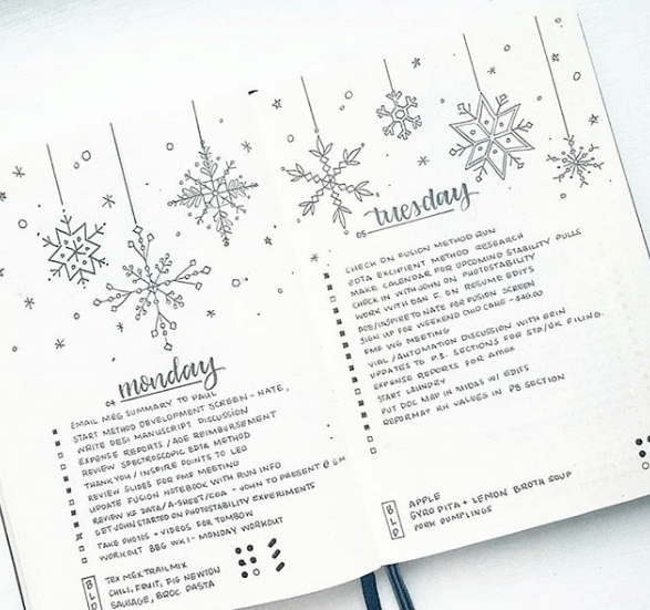 bonjournal_ Snowflake Daily Spread