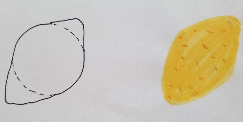 How To Draw Fruit Step by Step - Lemon
