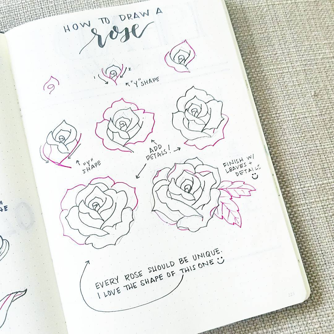 bonjournal_ How To Draw An Open Rose