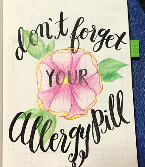 20 Spring Bullet Journal Ideas - 18